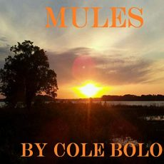 mules cole bolo robert wrenlock